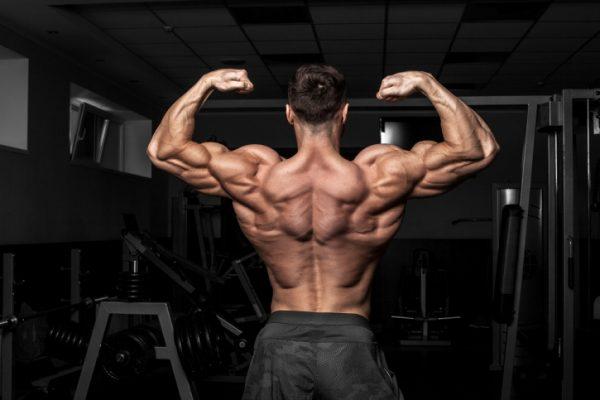 Die 5 besten Übungen für einen massiven und definierten Rücken