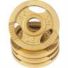 Hantelscheibe Guss Gripper Gold 0,5-20 KG