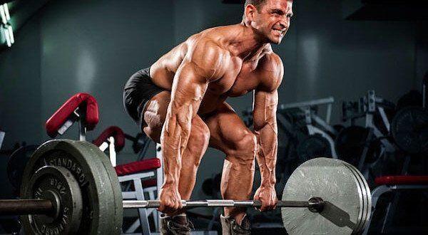Das Push-Pull Training zum Muskelaufbau