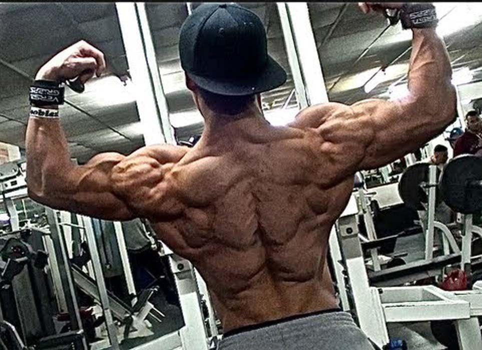 Diät für Sportler erhöhen die Muskelmasse